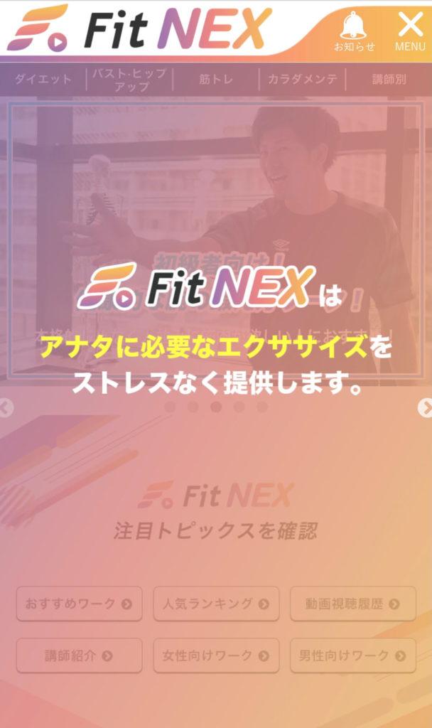 FitNEX6